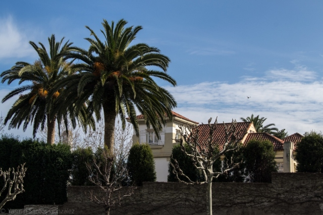 El arquitecto coruñés Rafael González Villar será el encargado en 1912 del proyecto de esta villa, situada en el extremo oeste de la ciudad jardín.