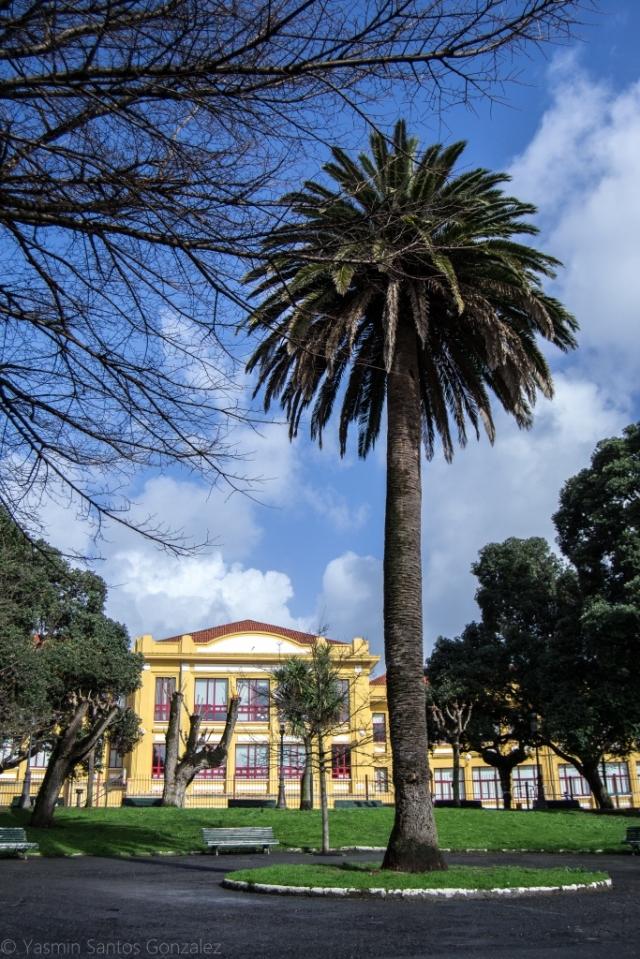 La urbanización, en cuyo centro se sitúa el destacado ejemplar, fue promovida por el político Ramón Maseda Reinante, con un concepto de vivienda unifamiliar para clases populares.