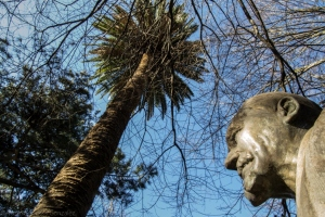 Los jardines son dedicados a la memoria del marino gallego en 1871. El palmeral está incluido en el catálogo de Árbores e formacións senlleiras de Galicia para su protección.