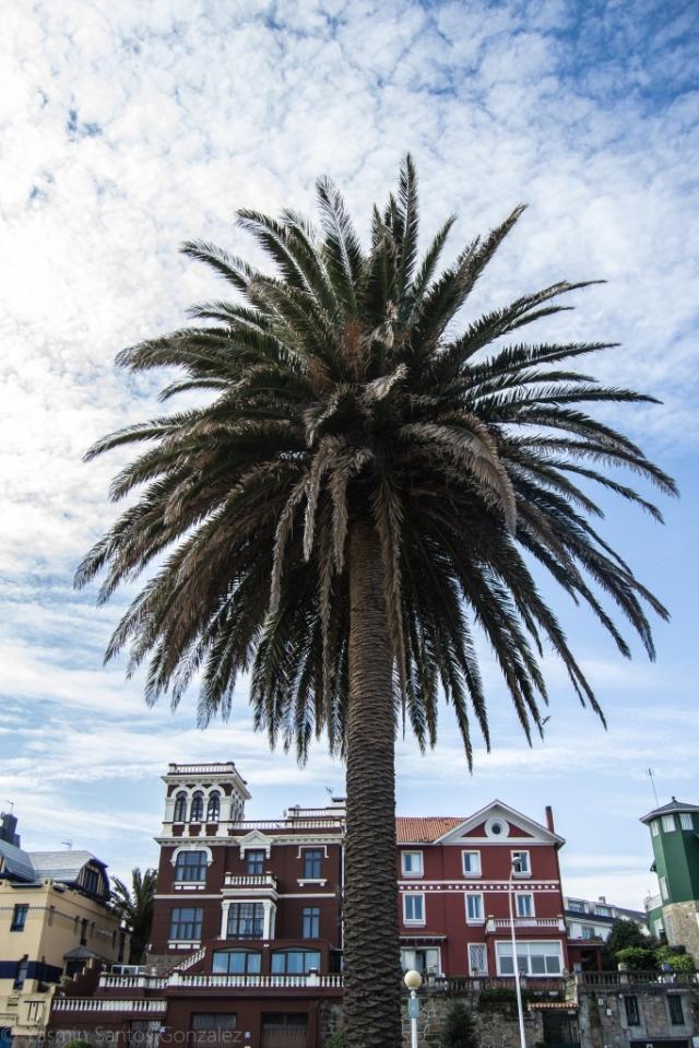 El proyecto será impulsado en 1921 por un grupo de coruñeses abanderados por Eduardo Rodríguez-Losada al abrigo de la Ley de Casas Baratas.