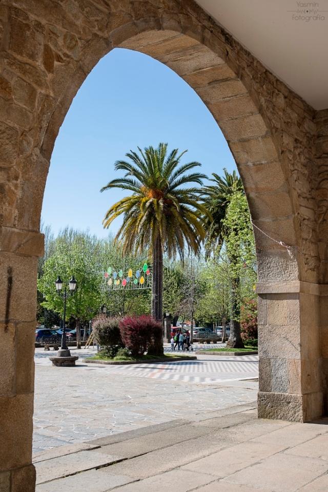 Junto a los Jardines de Felipe de Castro se yergue un palmeral en una zona que comenzará a ser urbanizada en 1880, sufriendo reformas y ampliaciones en 1926 y 1950 y destacando en uno de sus extremos el palco de la música.