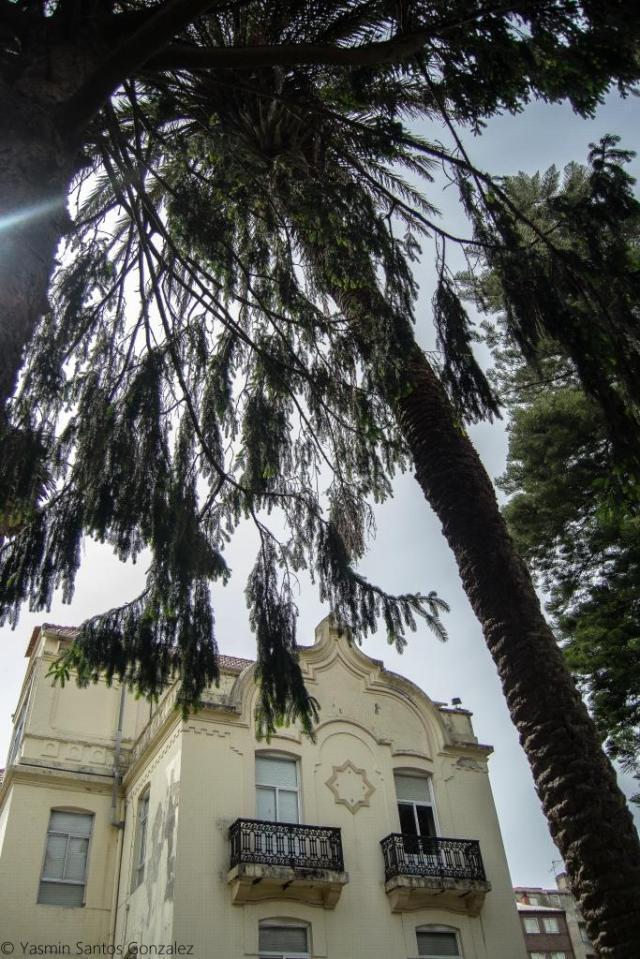 El inmueble es proyectado en 1918 por el arquitecto francés de origen polaco Michel Pacewicz como residencia particular de Manuel Montes, que había hecho fortuna en Chile.