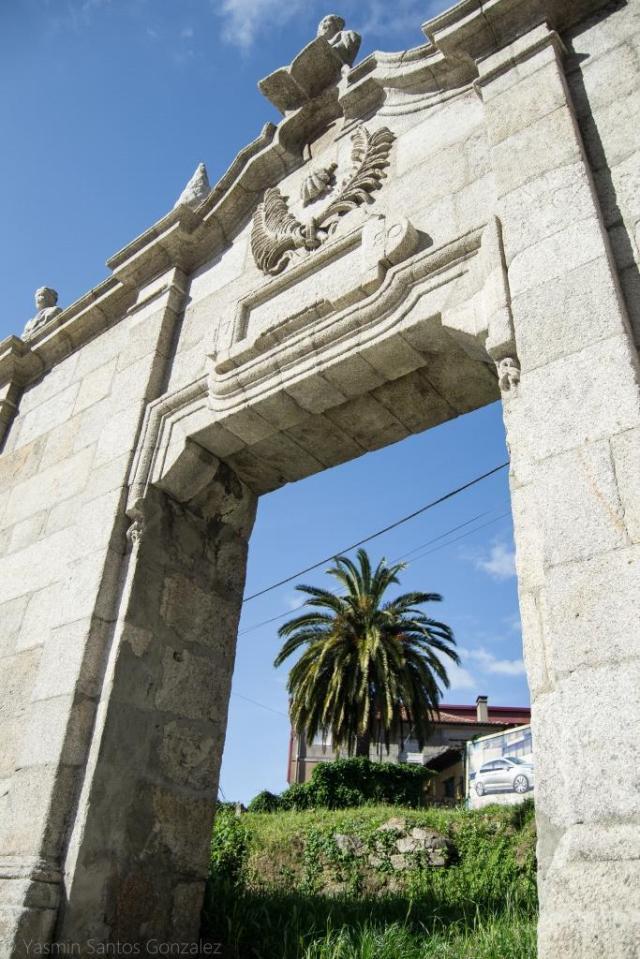 La palmera se yergue en una vivienda que lleva décadas abandonada. La contemplamos a través de la puerta que daba acceso a la Villa de Esperanza Davila, hoy trasladada a la plaza de Santa Rita.