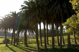 Las primeras referencias de esta propiedad de unas 30 hectáreas de extensión datan del siglo XV, relacionándola con la familia de los Sarmiento.