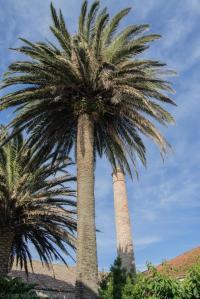 Situada en A Garita, un extremo de la playa de Rodeira, la construcción data aproximadamente de 1915.