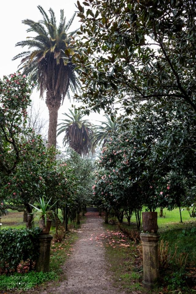 Con al menos cinco siglos de antigüedad, el Pazo de Lourizán es una propiedad enfocada principalmente hacia el uso agropecuario hasta su adquisición a finales del siglo XIX por el político gallego Eugenio Montero Ríos.