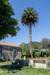 En el lugar de Manselle, perteneciente al Concello de Dodro, se levanta la Casa do Señorito que fue propiedad, según nos cuentan, del médico José Manselle, cuyo apellido terminó por dar nombre al espacio.