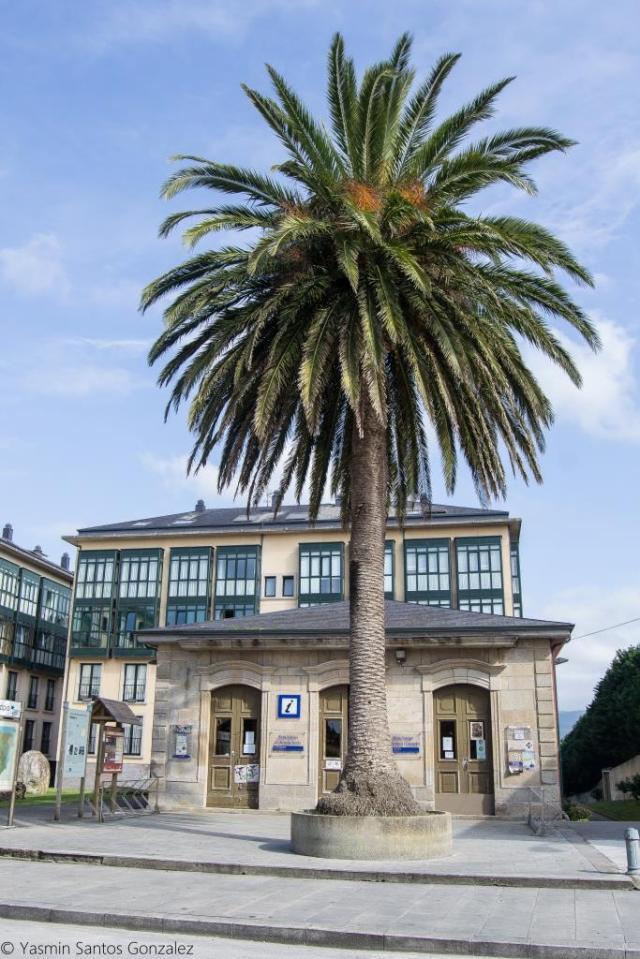 Se encontraba esta propiedad junto a la actual Plaza de España.