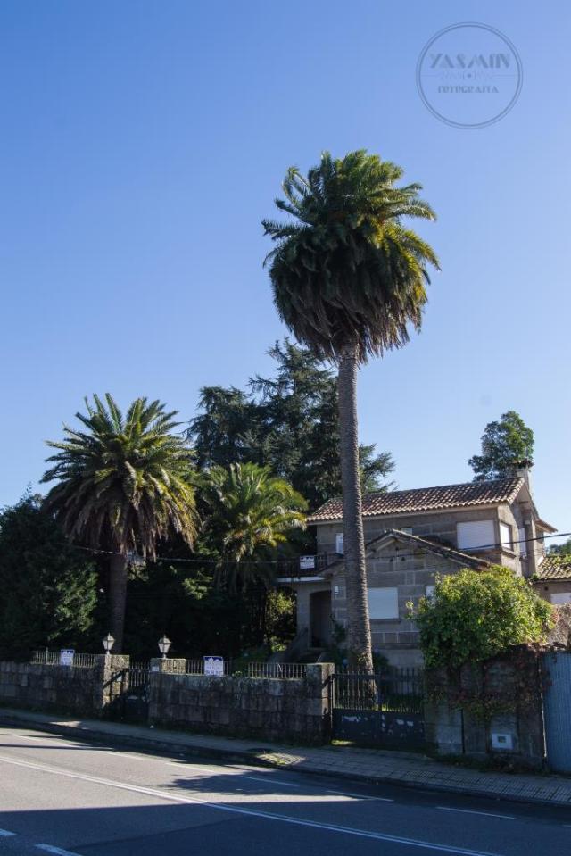 Frente a la carretera que une Pontevedra con Marín y junto a la nave de Tecnopesca se sitúa esta villa. El chalé, de planta en L, se distribuye en un semisótano y dos alturas, accediéndose a través de una escalera que sube hasta un pequeño porche.