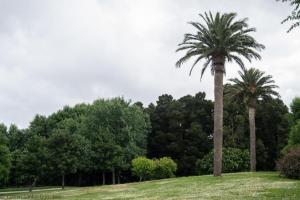 Ubicado a las orillas del río Sar, este parque es uno de los más extensos de la capital de Galicia.