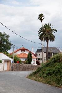 Entre la rúa Salvador de Madariaga y la carretera nacional se encuentra esta casa de planta rectangular. El nombre le viene dado por las dos grandes palmeras -una de ellas canaria- que se ubican junto a la puerta principal, adornada con jarrones de hierro forjado.