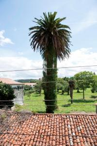 Muy próxima a les Escuelas de San Adrián, en la parroquia de San Adrián de Veiga, Ortigueira, se encuentra esta casa de campo de gran sencillez.