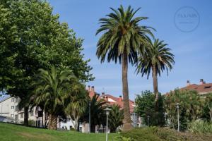 Encontramos dos ejemplares pareados de palmera canaria en la entrada de un pequeño parque, en el borde norte de la urbanización de Fontiñas.